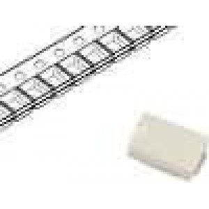 Pojistka tavná zpožděná keramická 3A 125VAC 7,24x4,32x3,05mm