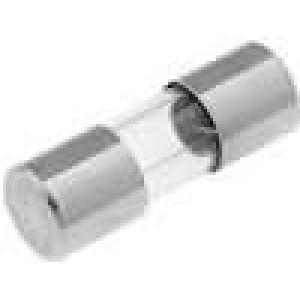 Pojistka tavná zpožděná sklěněná 1A 250VAC 5x15mm