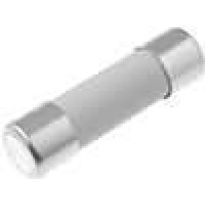 Pojistka tavná zpožděná keramická 10A 250VAC 5x20mm SPT