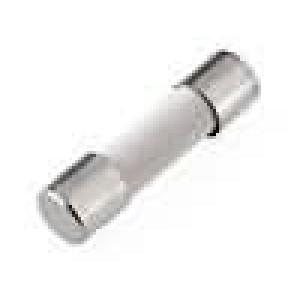 Pojistka tavná zpožděná keramická 6,3A 250VAC 5x20mm
