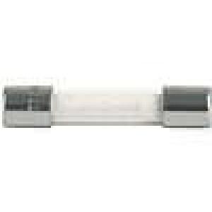 Pojistka tavná zpožděná sklěněná 6,3A 250VAC 6,3x32mm SPT