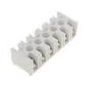 Svorkovnice póly:6 šroubová svorka 4mm2 32A bilá 500V
