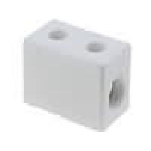 Svorkovnice póly:1 šroubová svorka 16mm2 450V Mat keramický