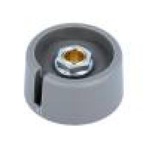 Knoflík s ukazatelem polyamid Pr.hříd:6mm Ø31x16mm šedá