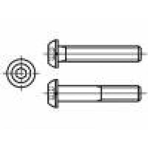 10 Hlava: kulatá Drážka: imbus ocel černěné HEX 2 mm