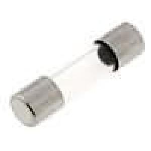 Pojistka tavná rychlá sklěněná 10A 250VAC 5x20mm mosaz 217
